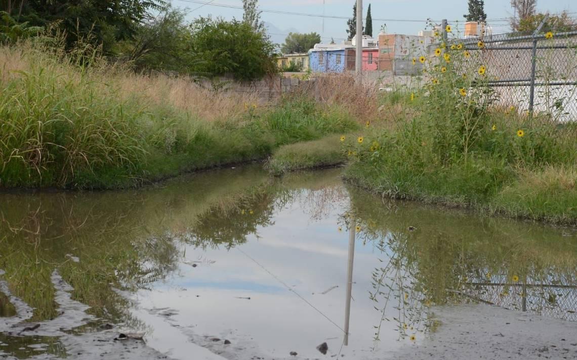 Evitar el agua estancada